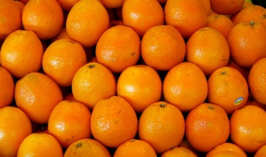 Sognare arance: Significato e Interpretazione dei Sogni