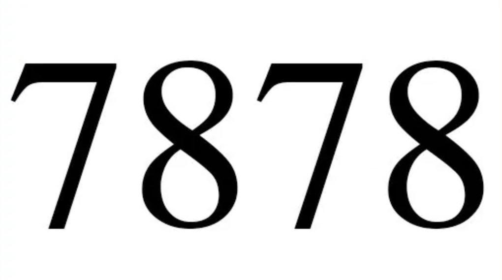 Il significato del numero 7878