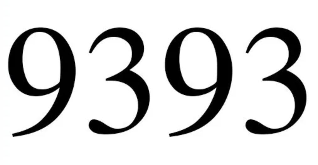 Il significato del numero 9393