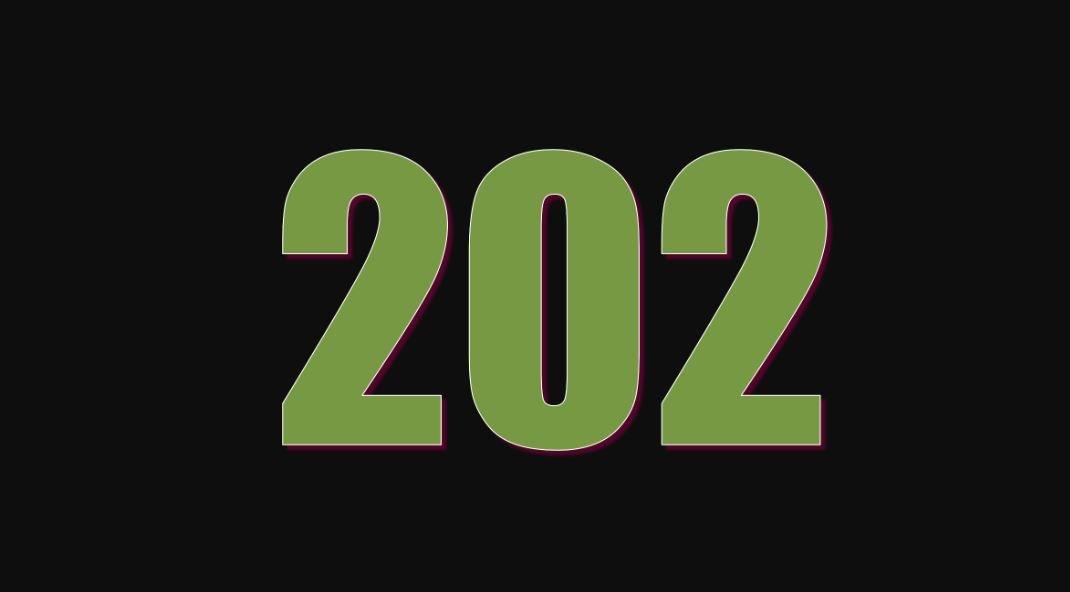 Il significato del numero 202