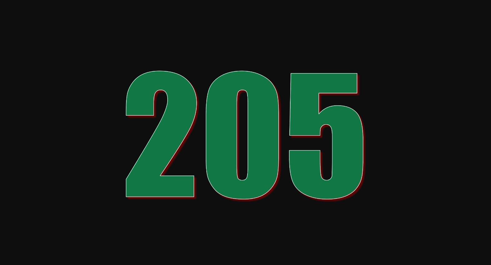 Il significato del numero 205