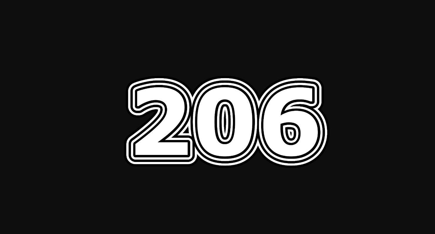 Il significato del numero 206