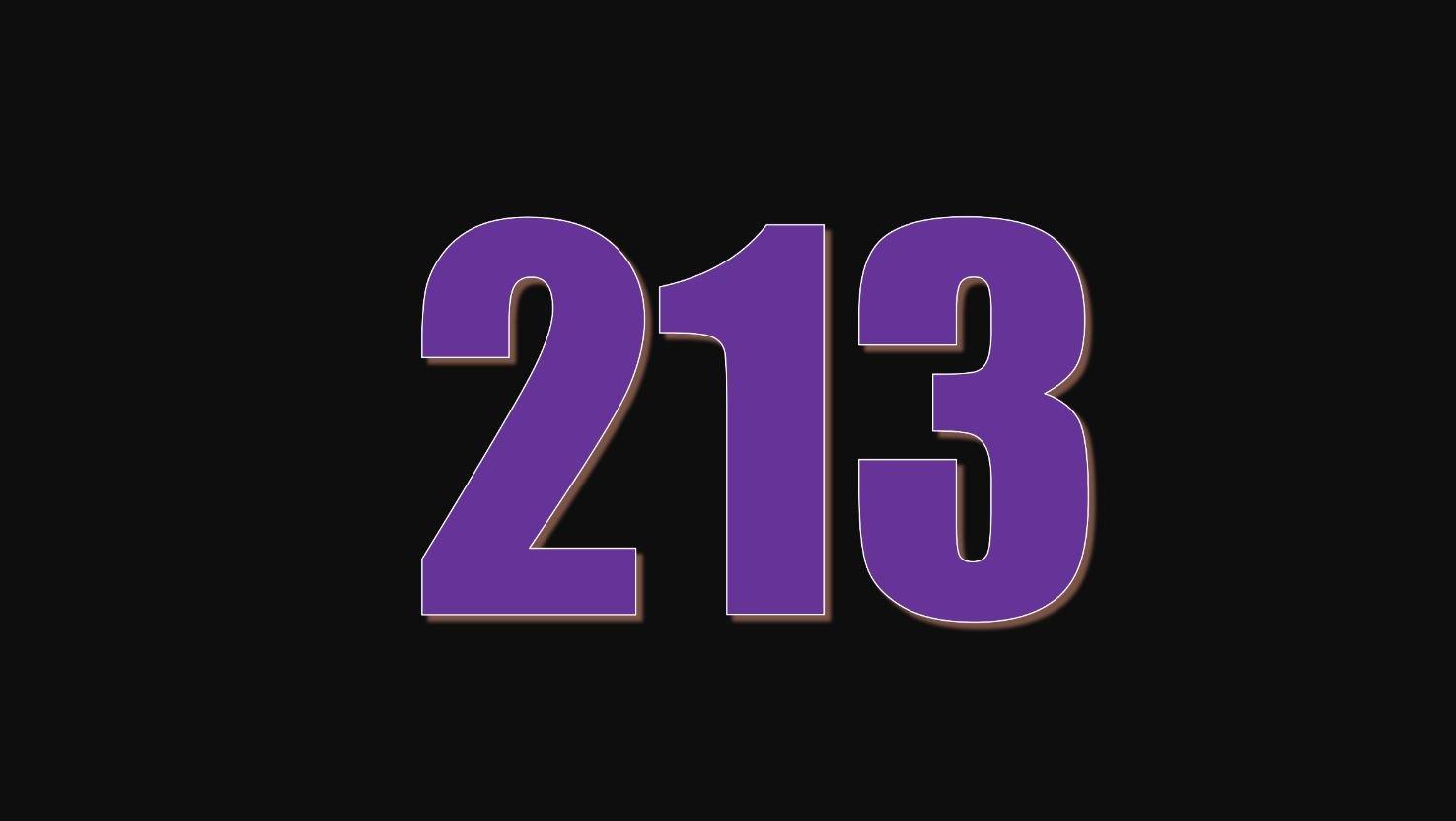 Il significato del numero 213