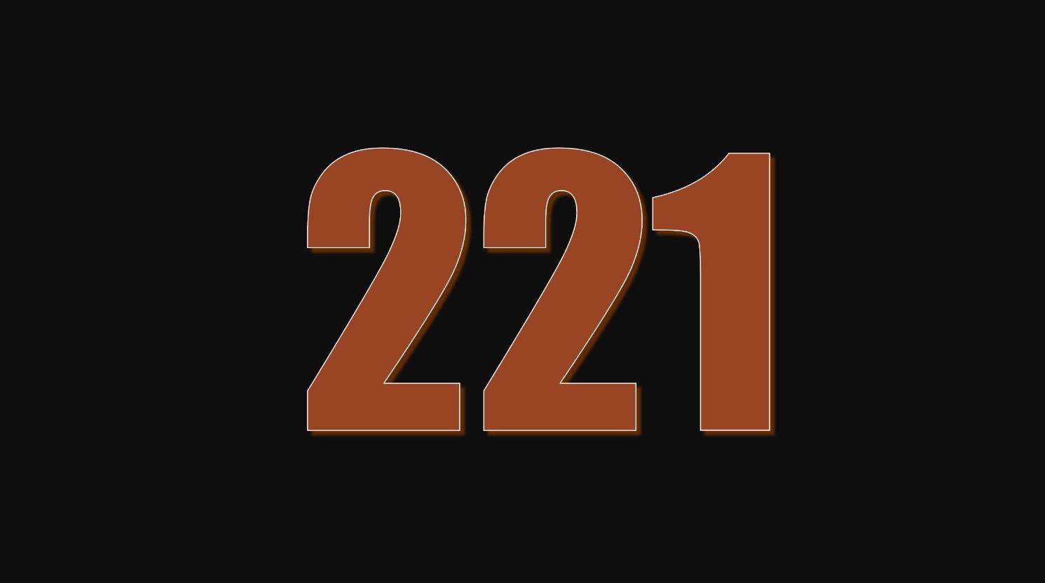 Il significato del numero 221