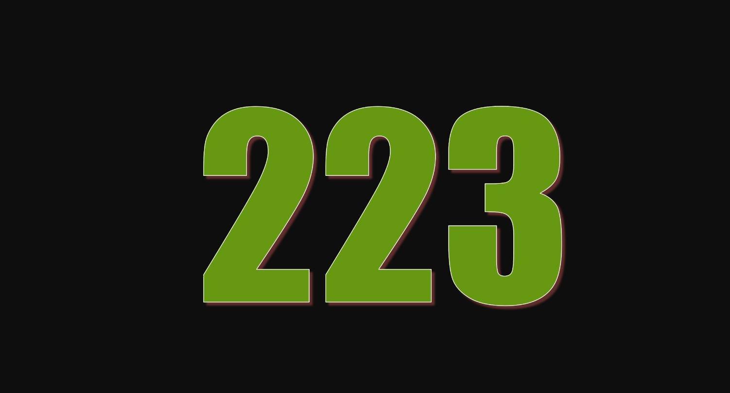 Il significato del numero 223