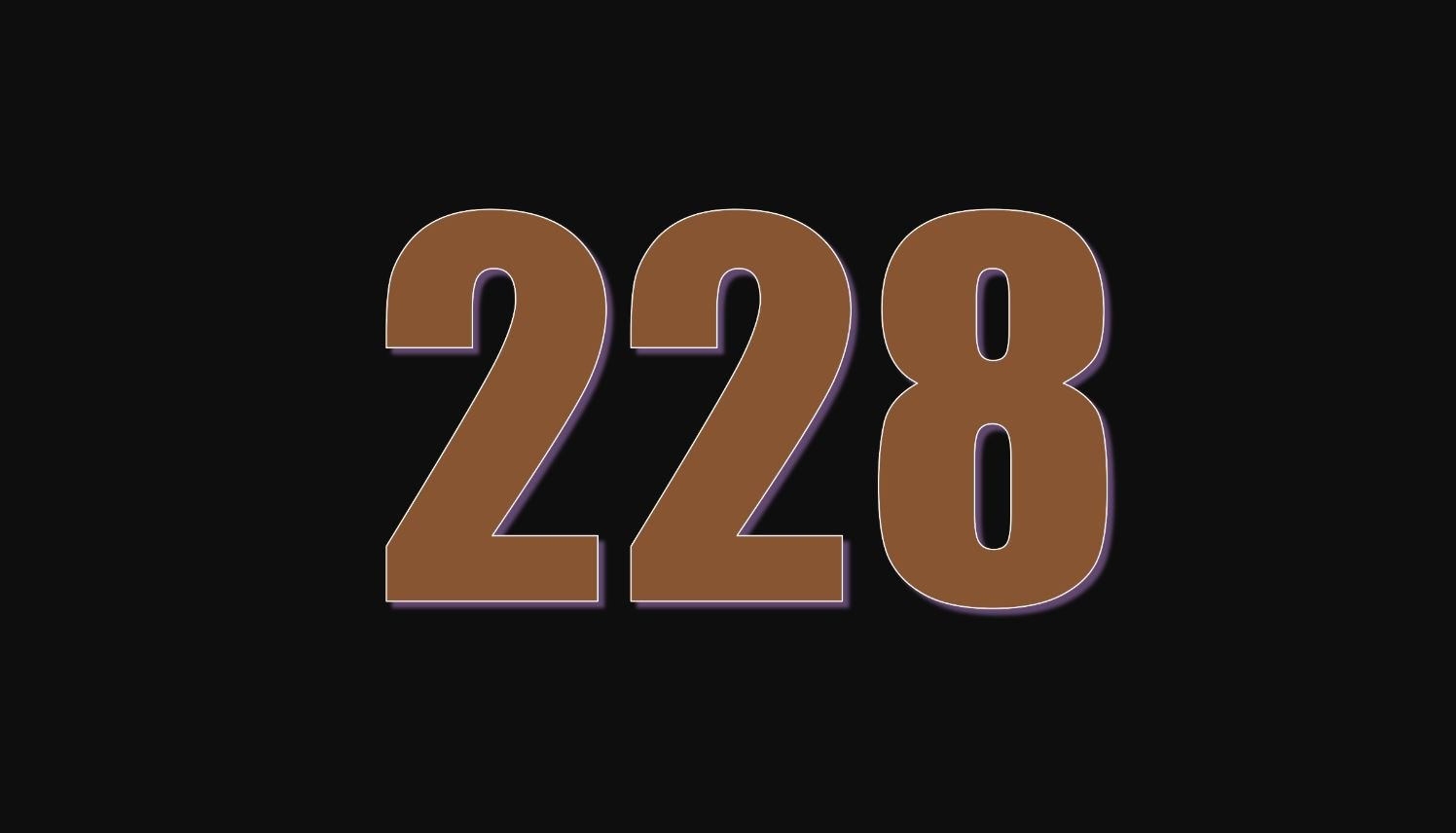 Il significato del numero 228