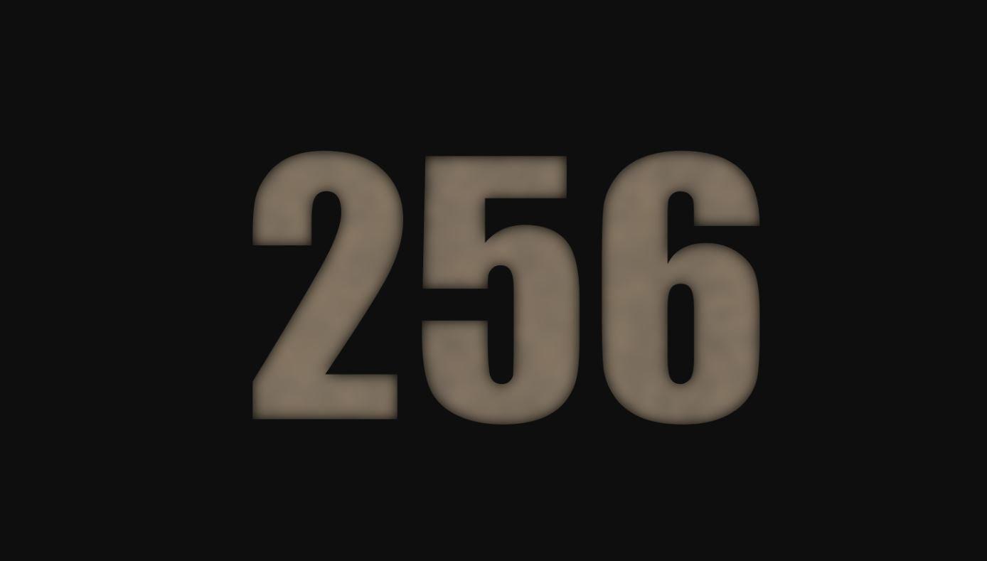 Il significato del numero 256