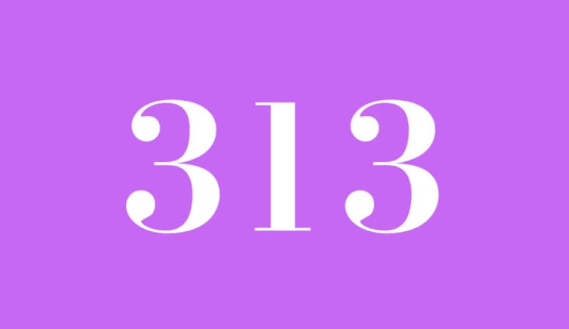 Il significato del numero 313
