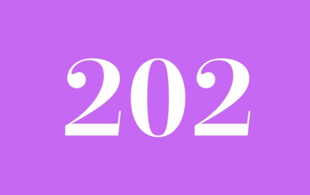 Significato del Numero Angelico 202