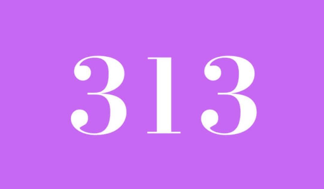 Significato del Numero Angelico 313