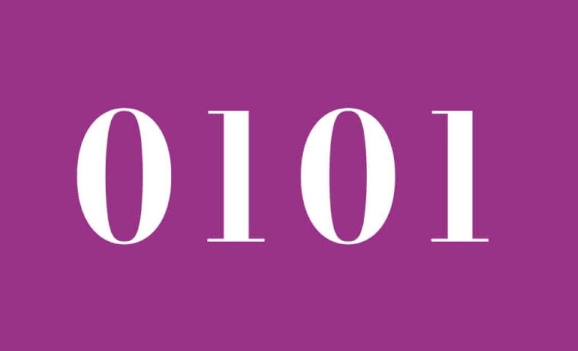 Il significato del numero 0101