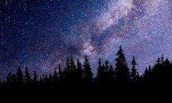 Oroscopo: 16 gennaio segno zodiacale