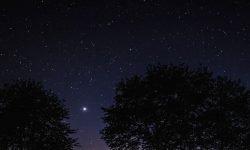 Oroscopo: 17 gennaio segno zodiacale
