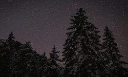 Oroscopo: 20 gennaio segno zodiacale