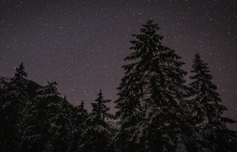 20 gennaio segno zodiacale
