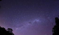 Oroscopo: 23 gennaio segno zodiacale