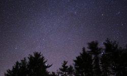 Oroscopo: 11 febbraio segno zodiacale