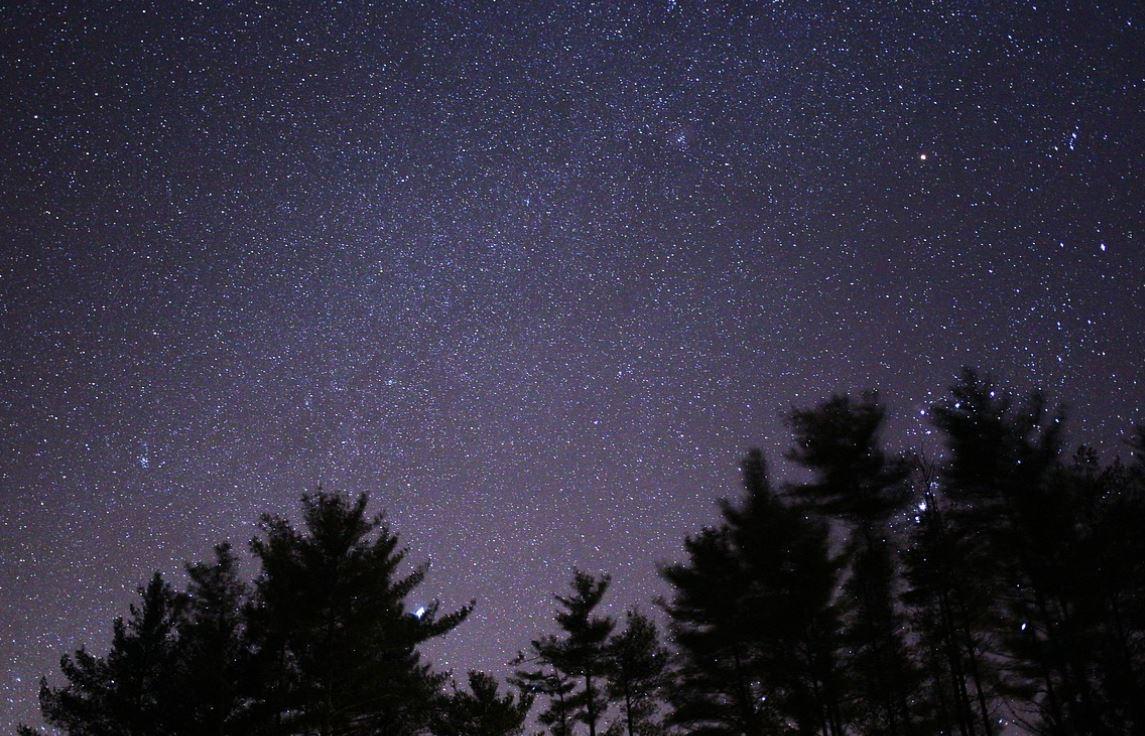 11 febbraio segno zodiacale
