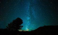 Oroscopo: 16 febbraio segno zodiacale