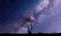 Oroscopo: 21 febbraio segno zodiacale