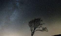 Oroscopo: 27 febbraio segno zodiacale