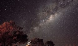 Oroscopo: 1 marzo segno zodiacale