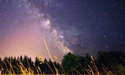 Oroscopo: 8 marzo segno zodiacale
