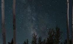 Oroscopo: 14 marzo segno zodiacale