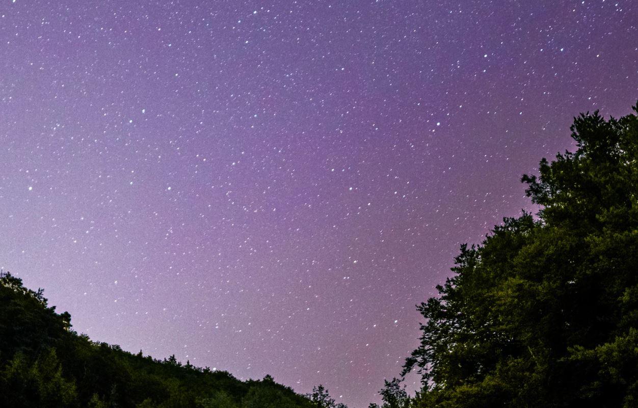 16 marzo segno zodiacale