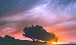 Oroscopo: 20 marzo segno zodiacale