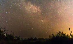 Oroscopo: 21 marzo segno zodiacale