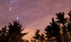 Oroscopo: 25 marzo segno zodiacale