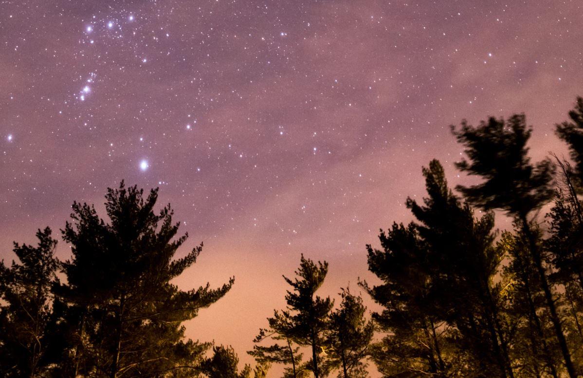 25 marzo segno zodiacale