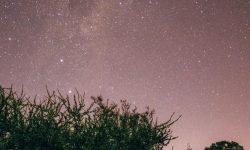 Oroscopo: 3 aprile segno zodiacale
