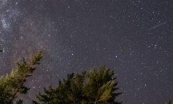Oroscopo: 5 aprile segno zodiacale
