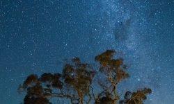 Oroscopo: 6 aprile segno zodiacale