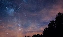 Oroscopo: 23 aprile segno zodiacale