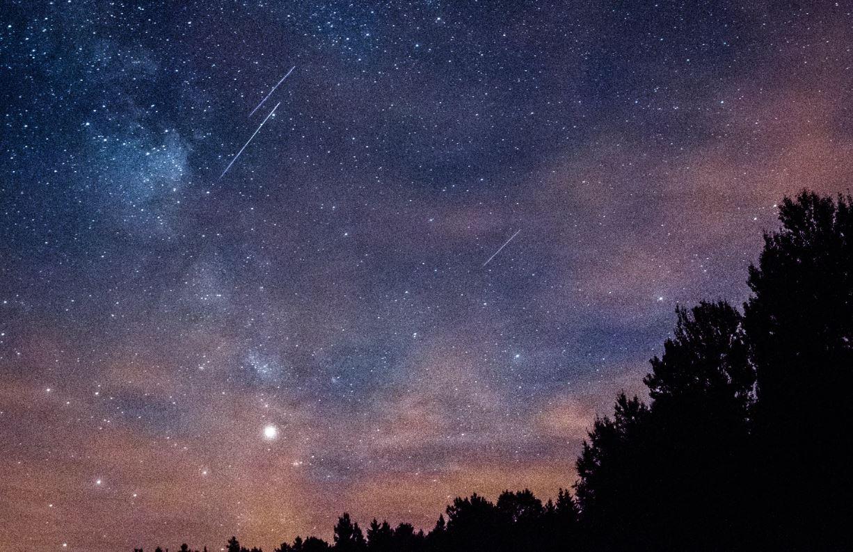 23 aprile segno zodiacale