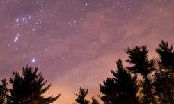 Oroscopo: 26 aprile segno zodiacale