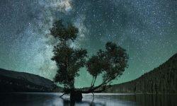 Oroscopo: 29 aprile segno zodiacale