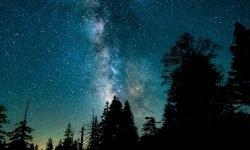 Oroscopo: 6 maggio segno zodiacale