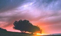 Oroscopo: 7 maggio segno zodiacale