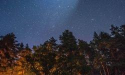 Oroscopo: 12 maggio segno zodiacale