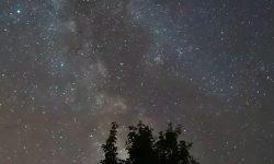 Oroscopo: 14 maggio segno zodiacale