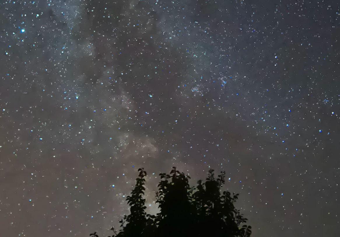 14 maggio segno zodiacale