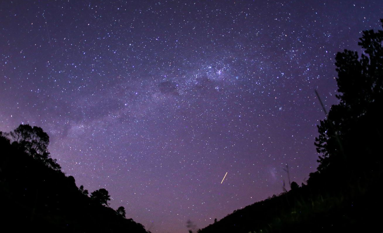 15 maggio segno zodiacale