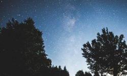 Oroscopo: 17 maggio segno zodiacale