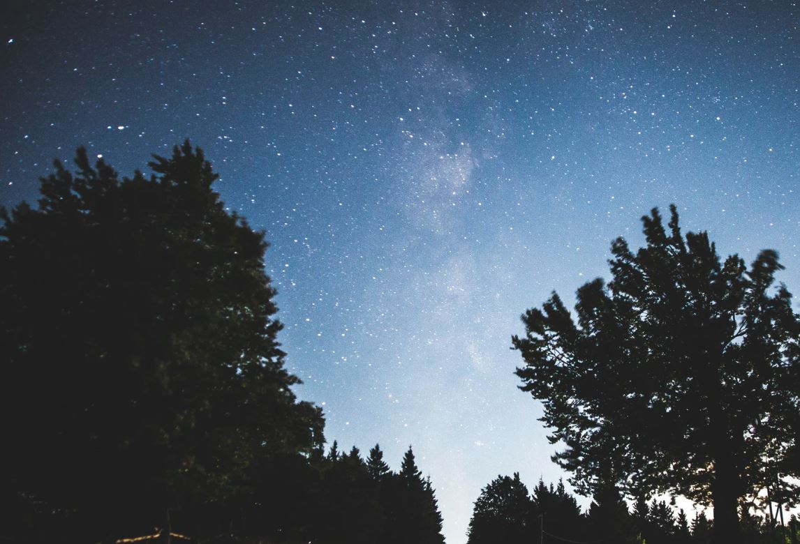 17 maggio segno zodiacale