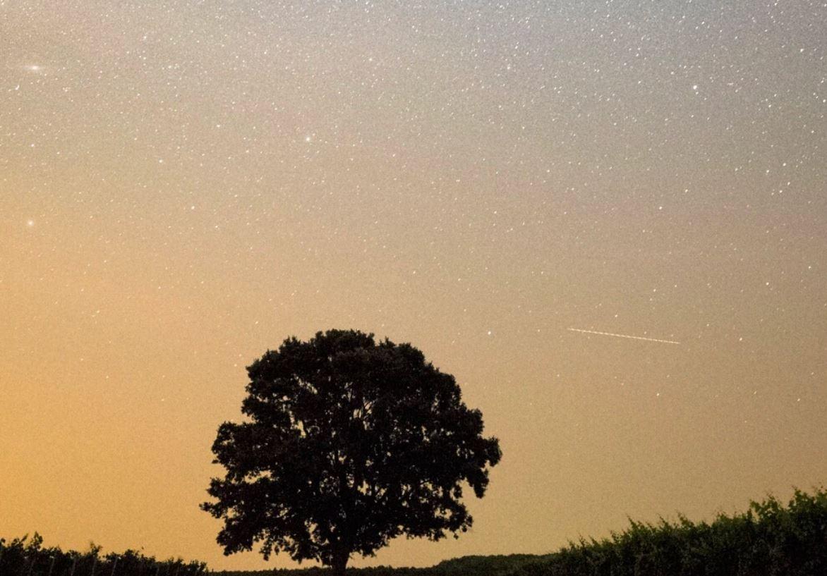 28 maggio segno zodiacale