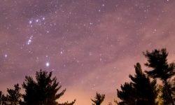 Oroscopo: 1 giugno segno zodiacale